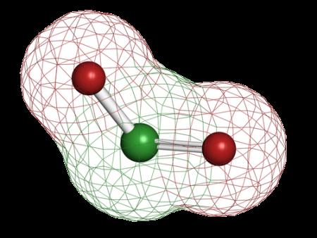 CD Molecule